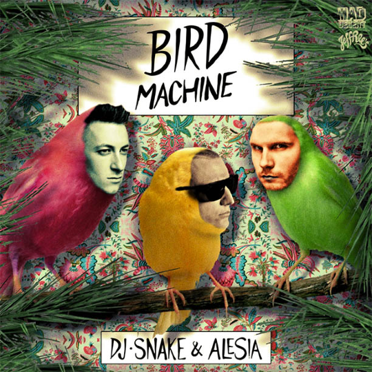 DJ-Snake-Bird-Machine-feat-Alesia.jpg