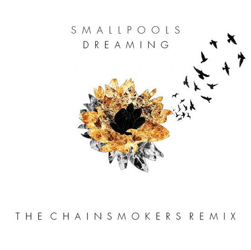 Smallpools-Dreaming-The-Chainsmokers-Remix.jpg