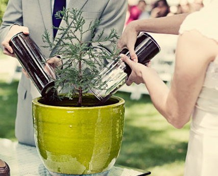Tree-Unity-Ceremony-Idea