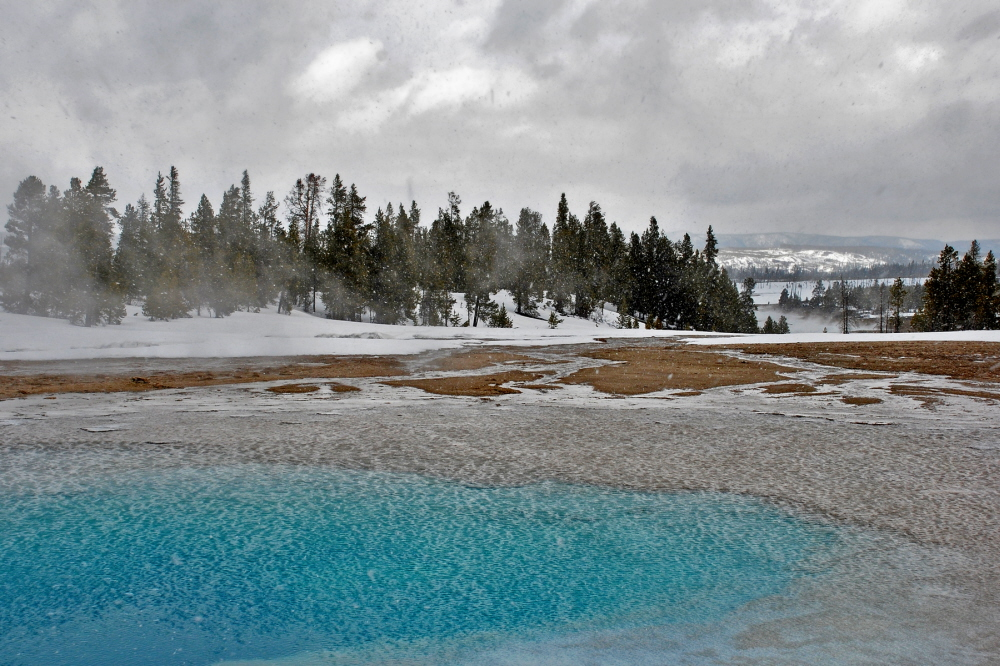 Winter in Yellowstone 4.jpg