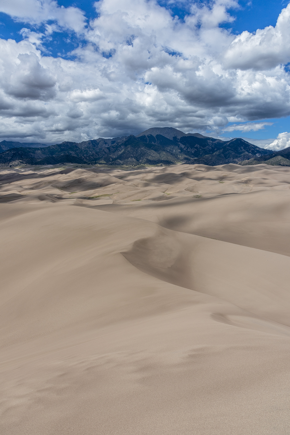 2018-06 CCT D Great Sand Dunes (564) FIX.jpg