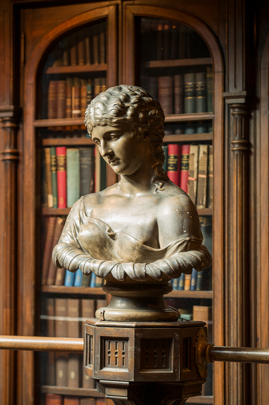 Victorian bust from original Lea Library.