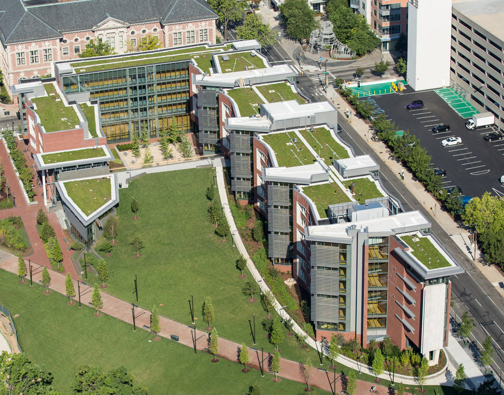 Green is emphasized above as well as below –a true urban oasis