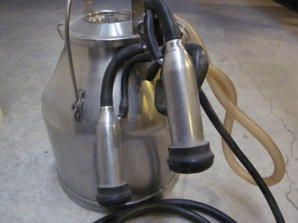 Surge milker