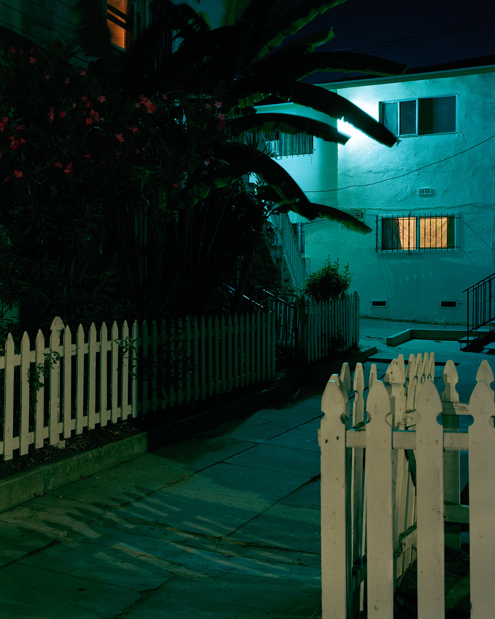 LA Night.jpg