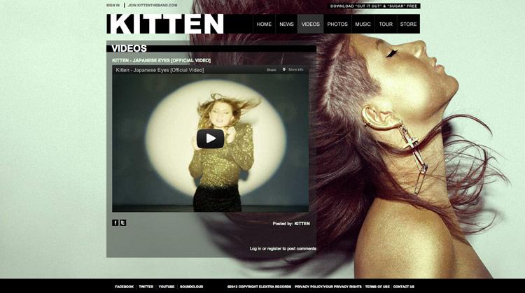 Kitten-VideoDetail.jpg