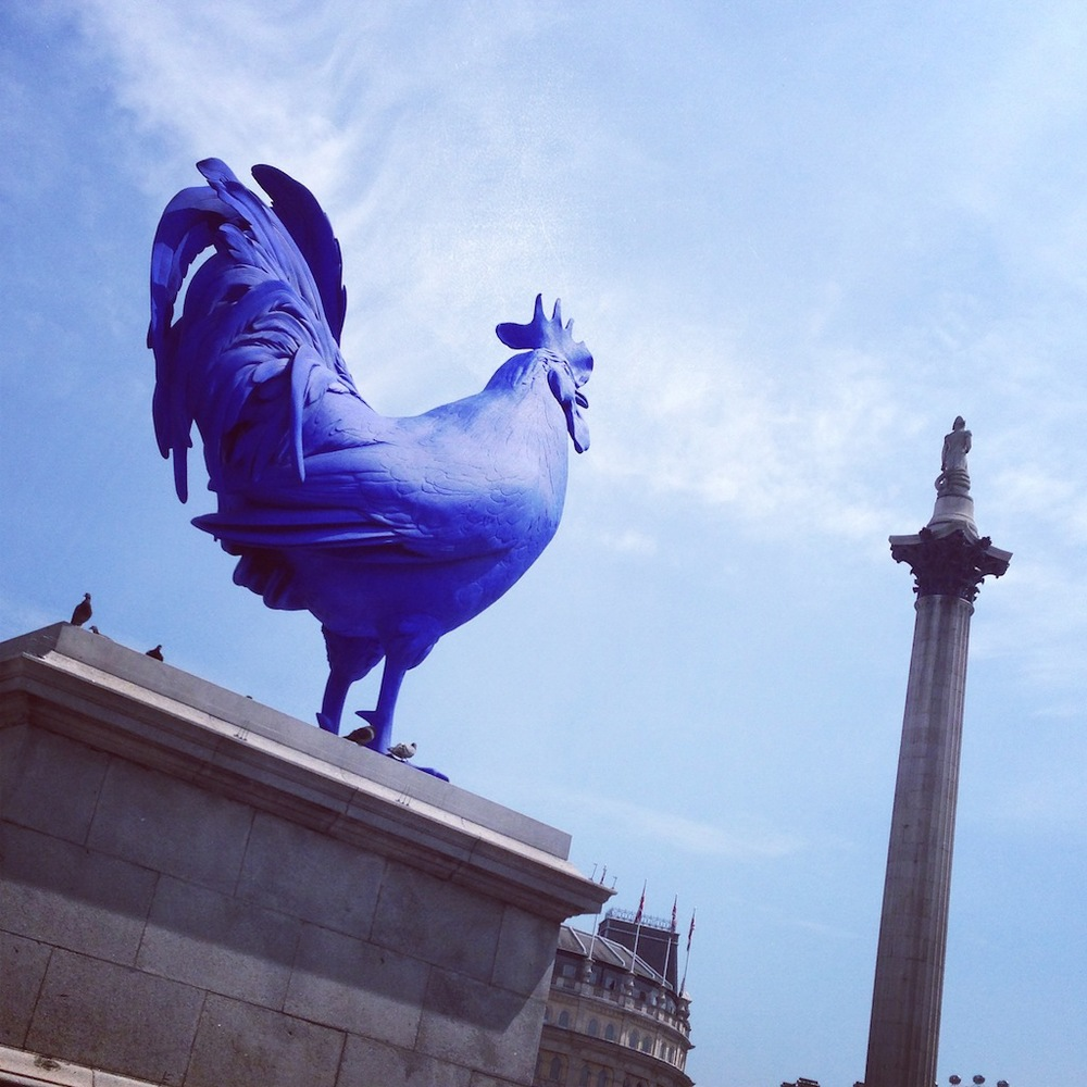 The fourth plinth has got this magnificent fellow on it