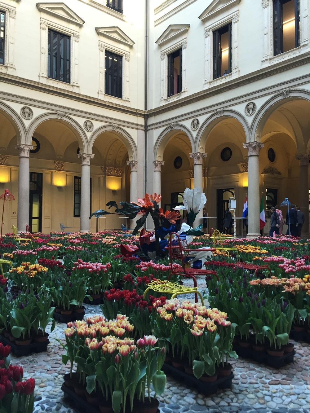 Off the plane and into a palazzo. The courtyard at Palazzo Francesco Turati was filled with beautiful tulips for  Masterly, The Dutch in Milano  exhibition.
