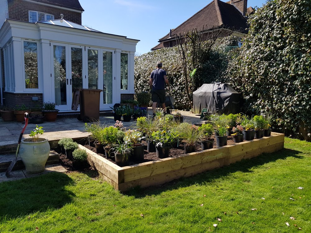 Setting out the plants pre-planting. It was a very hot day but luckily I had some help from Mick and Toby from  Lawns & Leaves  a local design and maintenance company