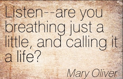 mary oliver 2