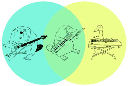 fastandbulbous :     Best Venn Ever