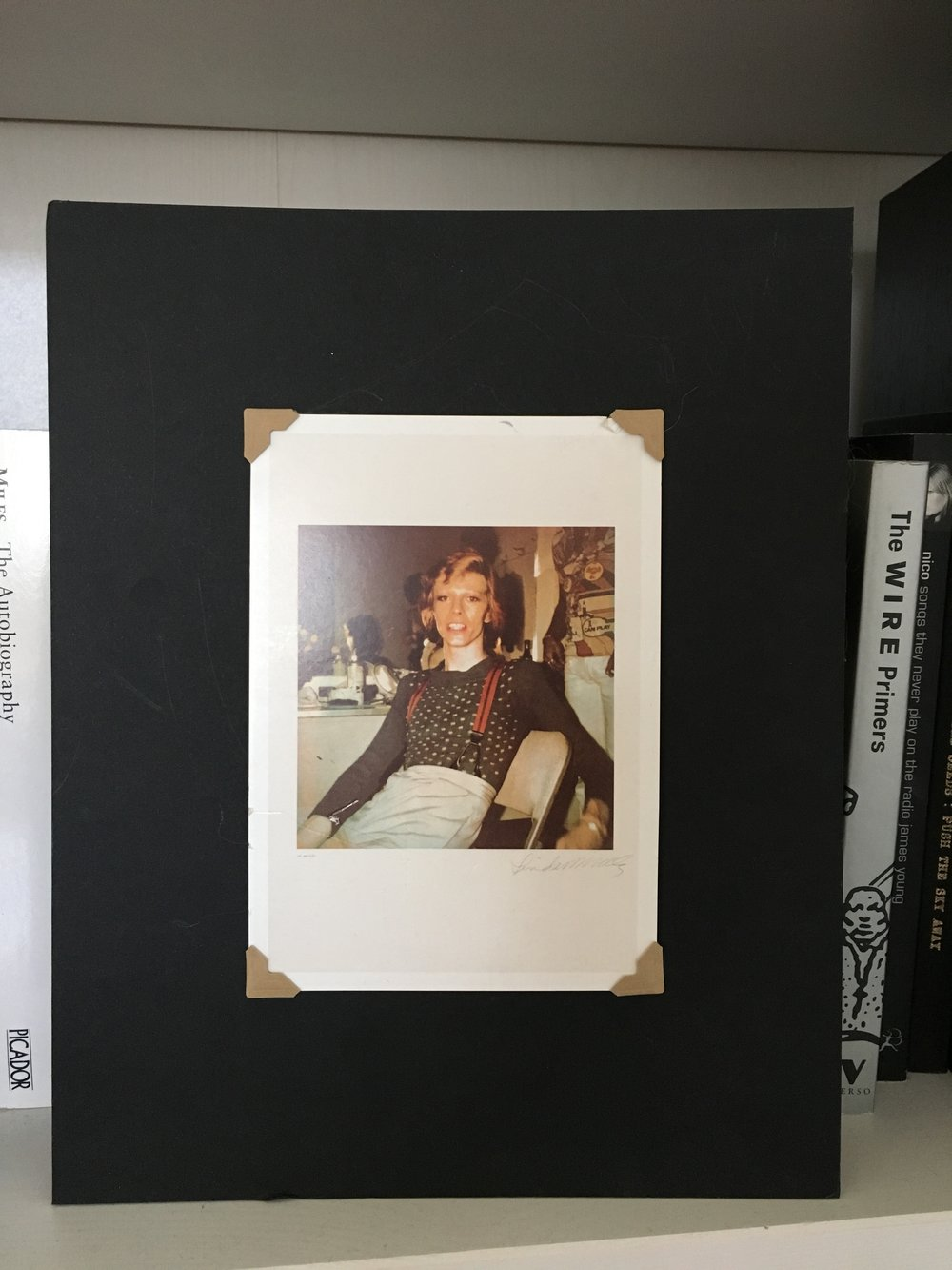 Photograph of a postcard...of a photograph by Linda McCartney.
