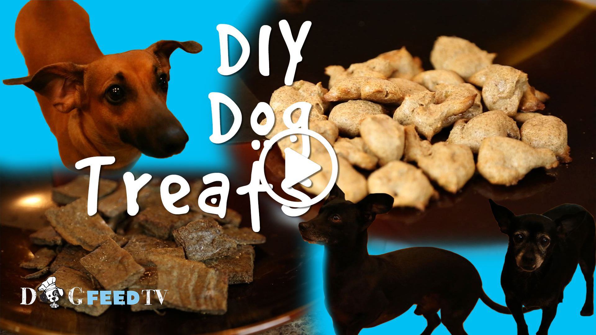 Baking Homemade Dog Treats: Banana-Almond and Diabetic-Friendly Liver Treats