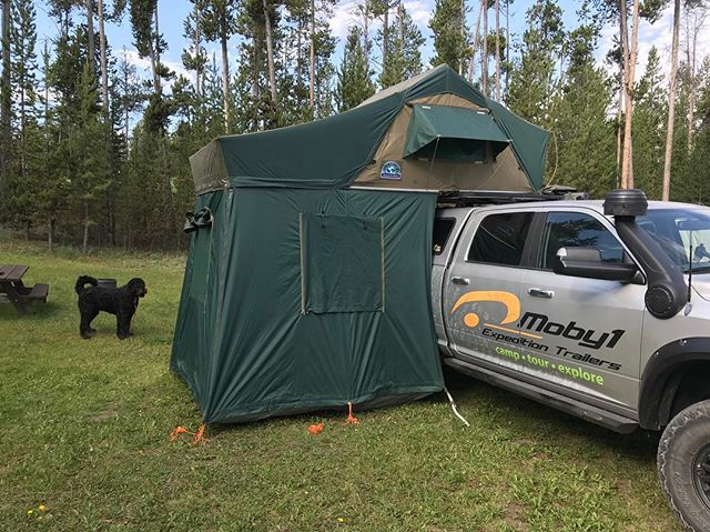 We have a brand new Hannibal Safari rooftop tent for sale on our website. $3,200 plus $280 freight. ——————————-// It is left over from our days of working with Hannibal USA. ................................................ #hannibalsafari #rooftoptent #rtt #ram #aevconversions #aev #moby1 #hannibalusa #yellowstonenationalpark #jacksonhole #jeep #toyota #landrover #overland #overlanding #camping #tent #cooltent #bernedoodle #bernedoodlesofinstagram