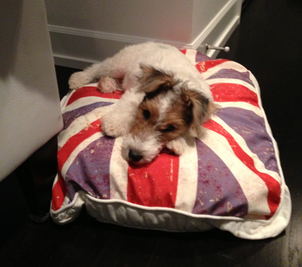 Beckham and Union Jack Bed