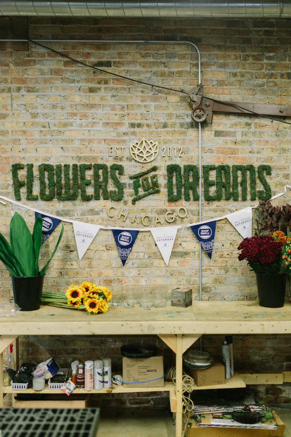 Shop Small: Flowers for Dreams