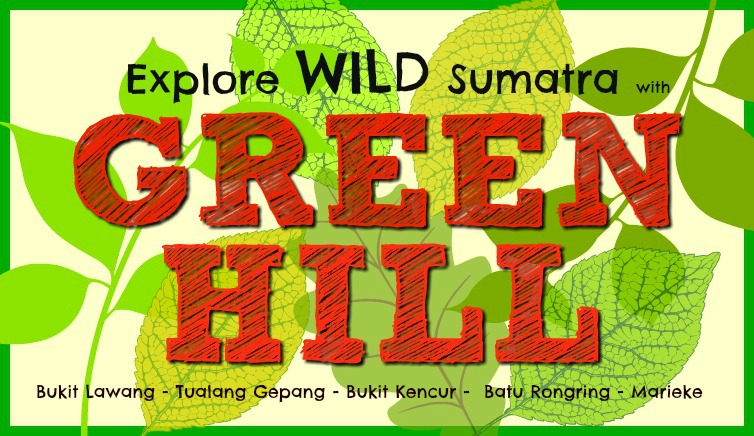 Green Hill Guest House and Trekking, Bukit Lawang, North Sumatra