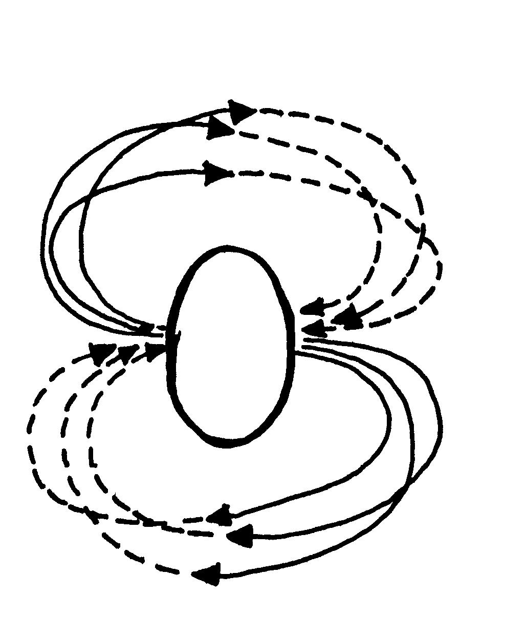 Conceptual Circulation Diagram