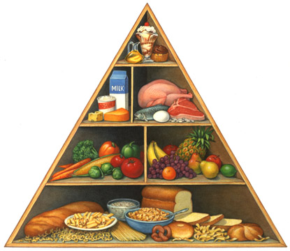 diet-guide-triangle.jpg