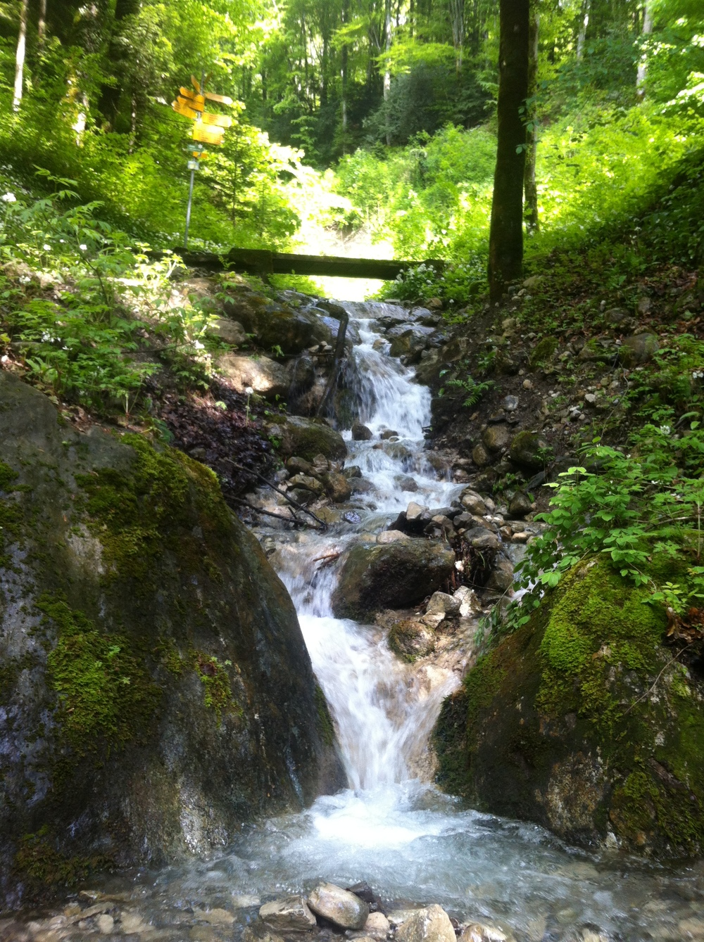 Gotta love a mini-waterfall:)