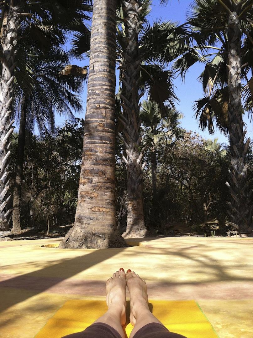 Sandele Palm Shala Main.jpg