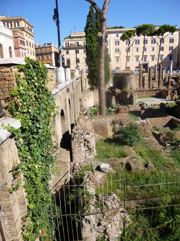 The site where the historic blood of Julius Caesar was spilt, not the sunbathing spot of cats