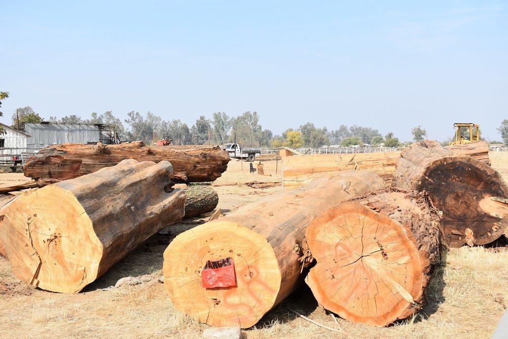 Lumber2.jpg
