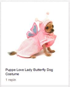 Pinterest's for chicks