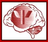 d40 logo.jpg