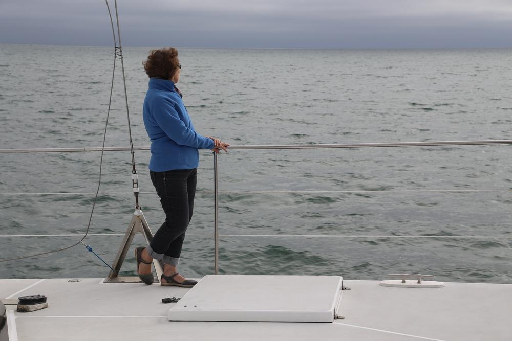 Julie Minnis, facilitator of the Catamaran Literary Salon