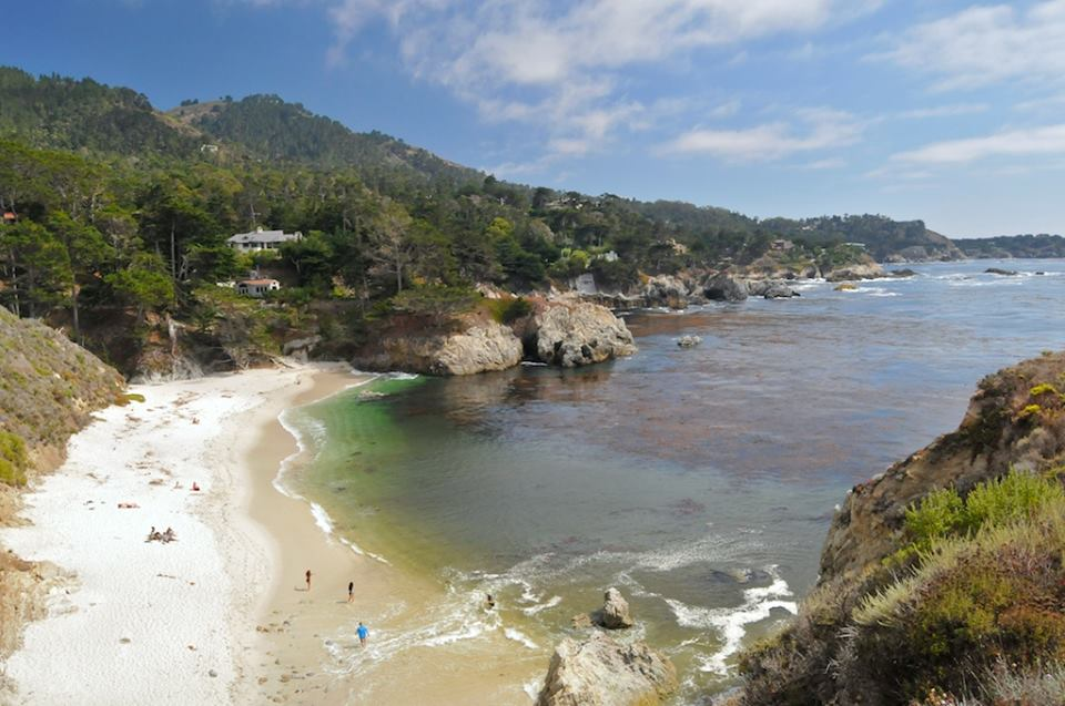 Copy of Copy of Excursion to nearby Point Lobos