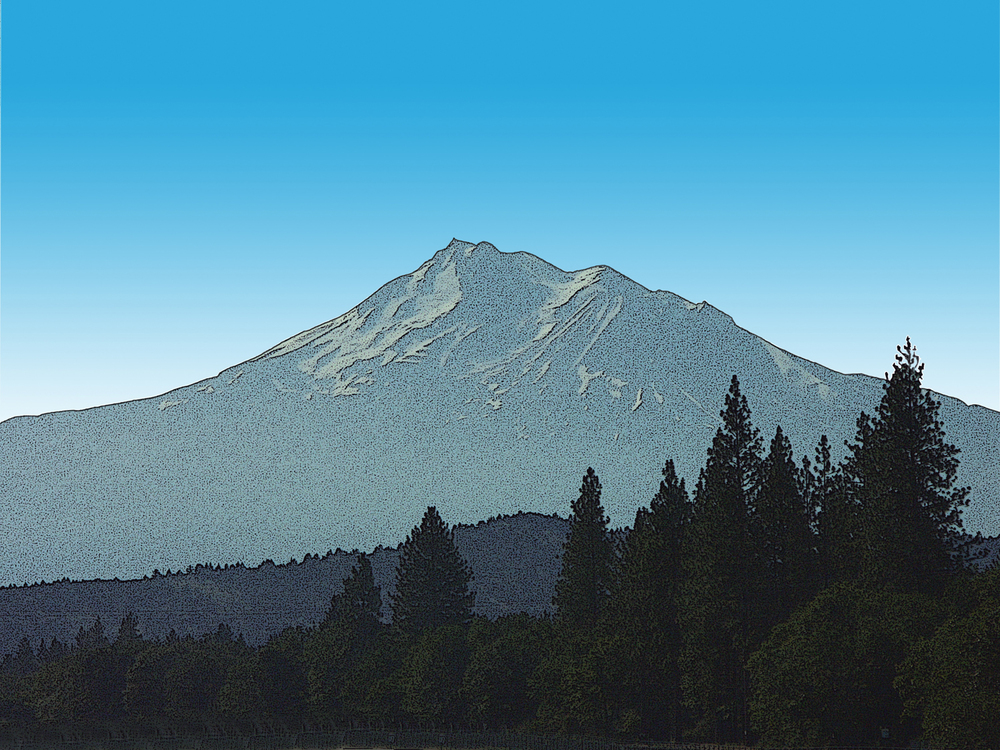 Mount Shasta and Forest, CA