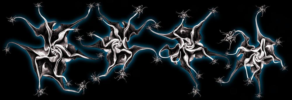 Dark Datura Dance