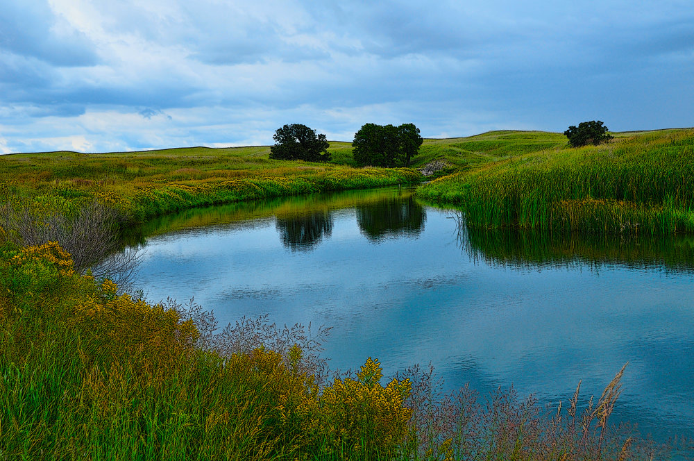 Pond and Trees - Sandhills Nebraska