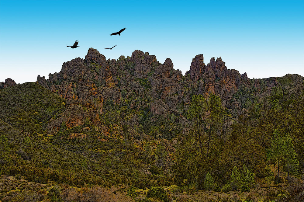 Pinnacles with Condors • Pinnacles National Monument, CA