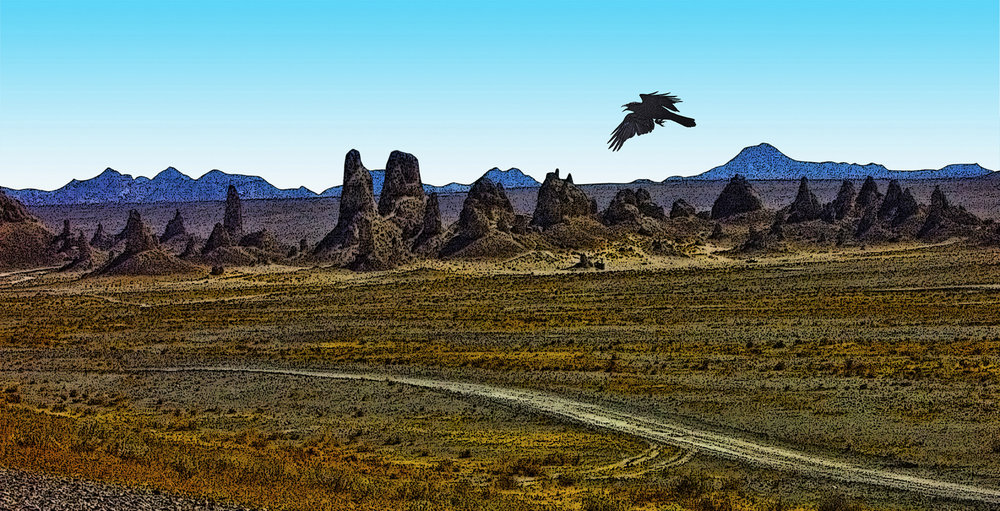 Trona Pinnacles and Raven • Trona, CA