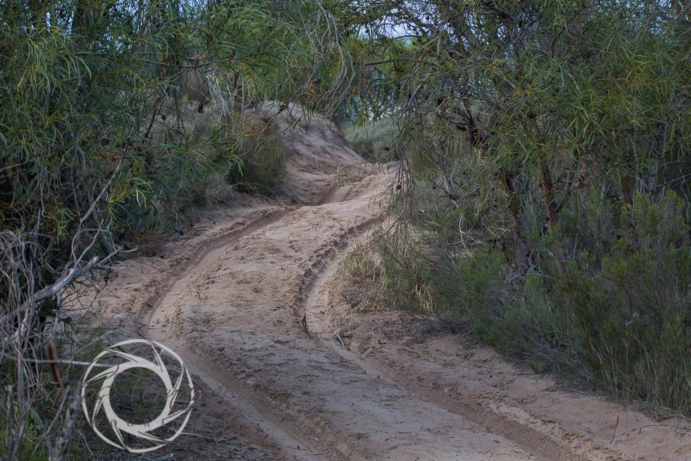 20130615_buffalofontein-23.jpg