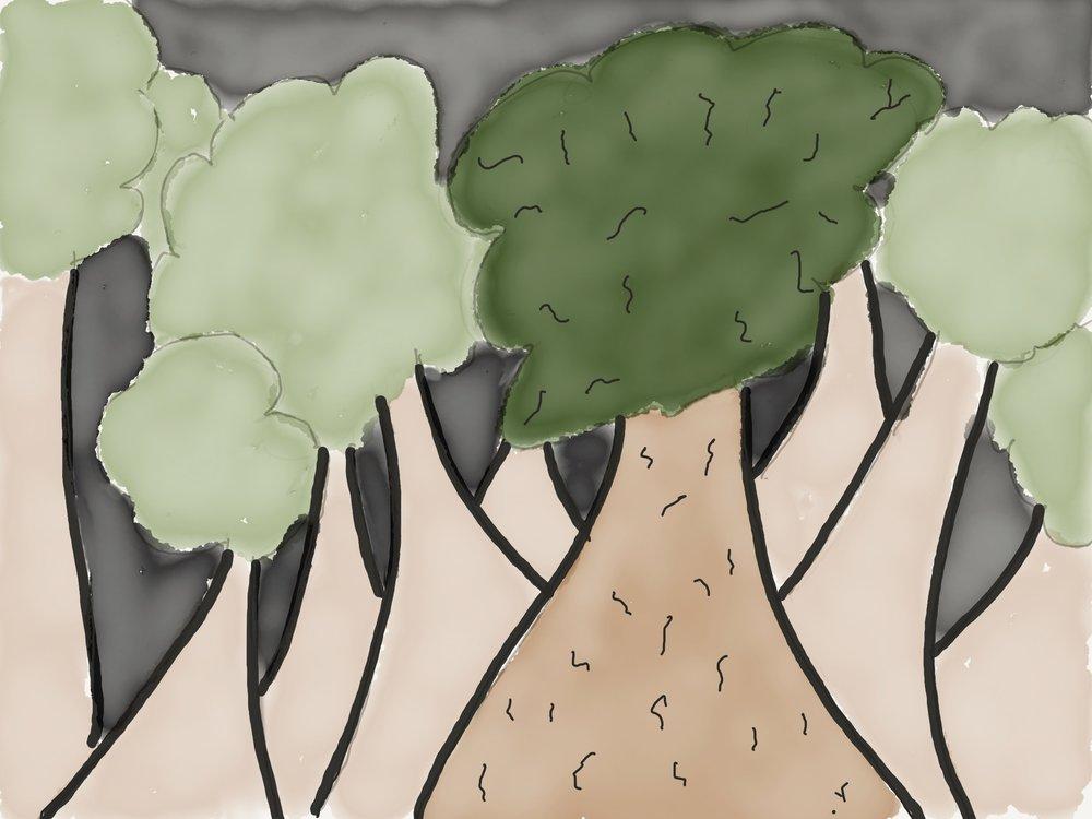 treeforforest.jpg