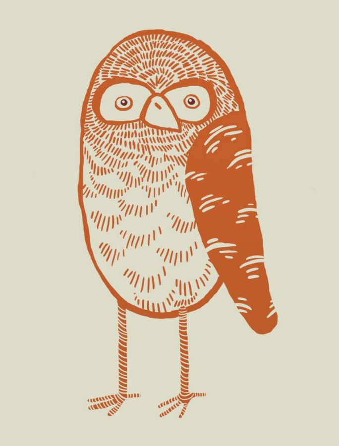 OWLHANG.jpg