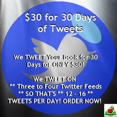 $30 for 30 Days Book Promo Plan