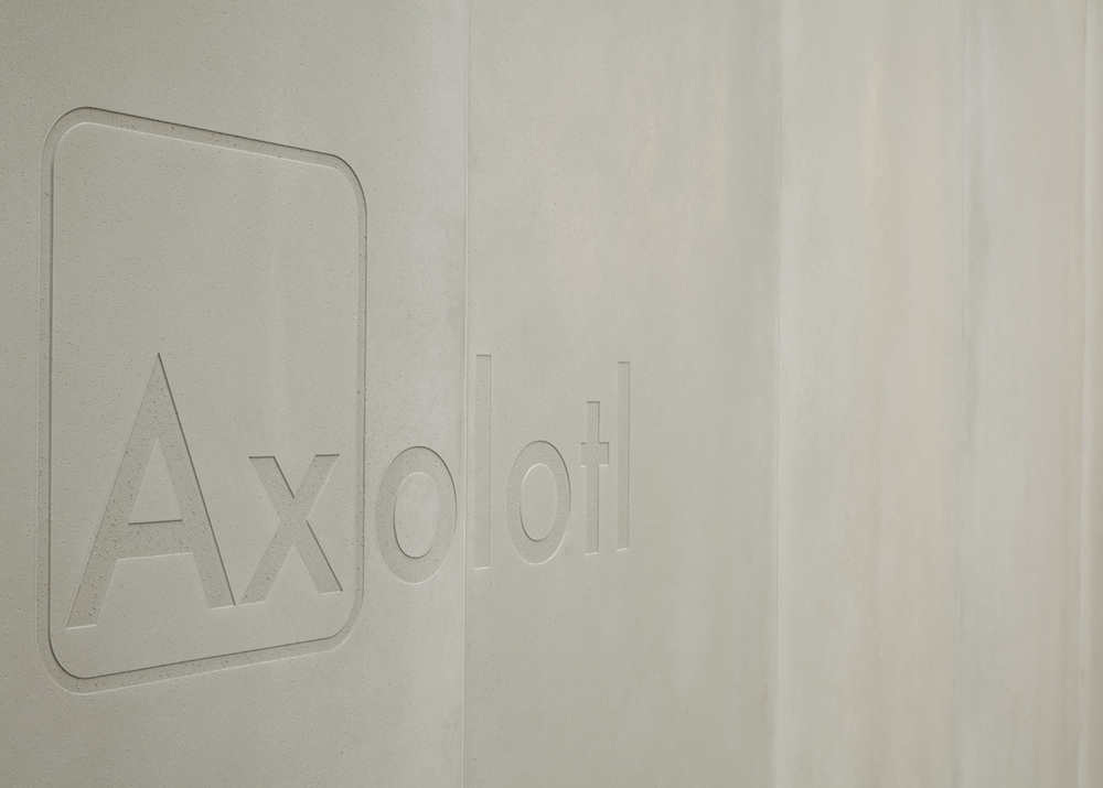 Axolotl_Designex2012_004.jpg