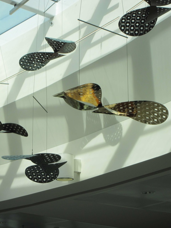 AXOLOTL_BRISBANEAIRPORT_BUTTERFLIES