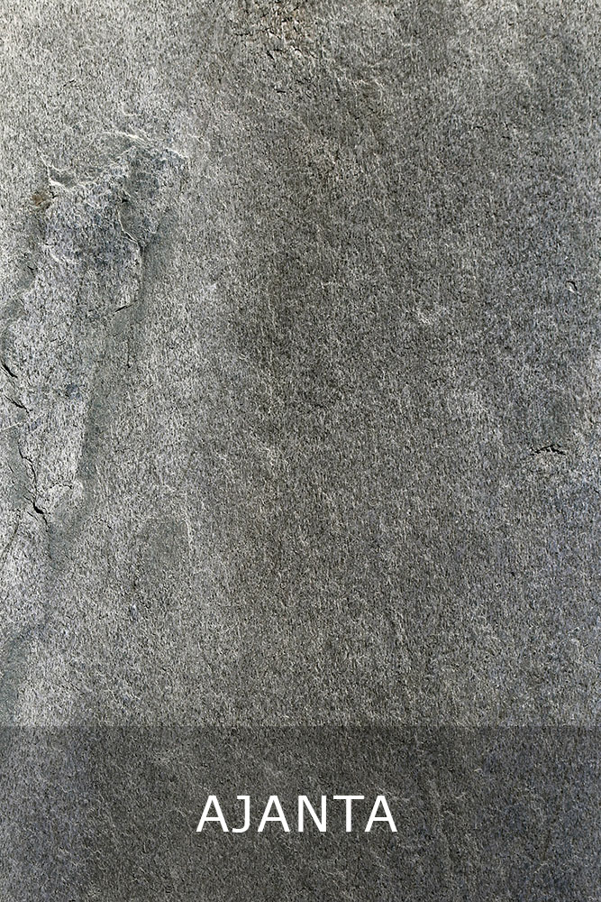 AxolotlStone_Ajanta1.jpg
