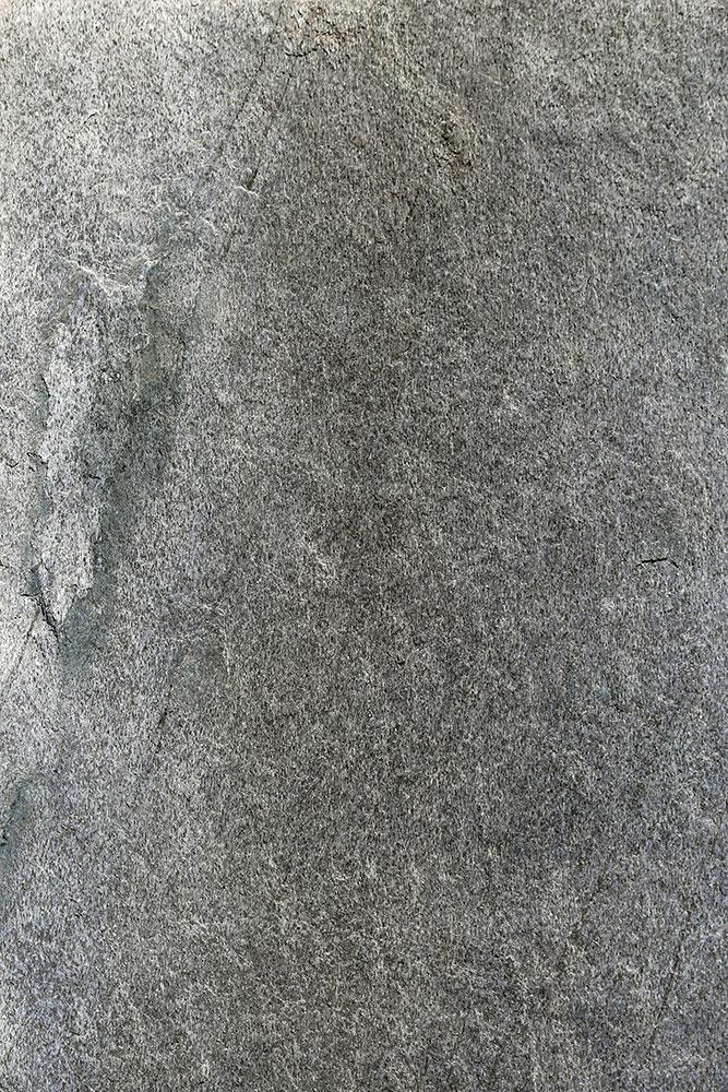 AxolotlStone_Ajanta2.jpg