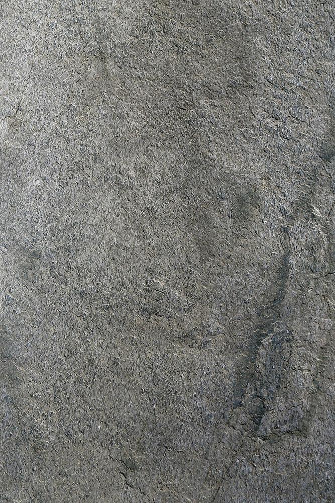 AxolotlStone_Ajanta3.jpg