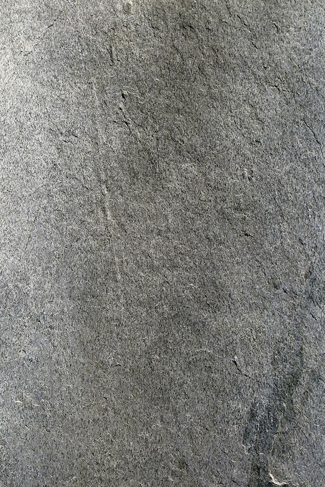 AxolotlStone_Ajanta5.jpg