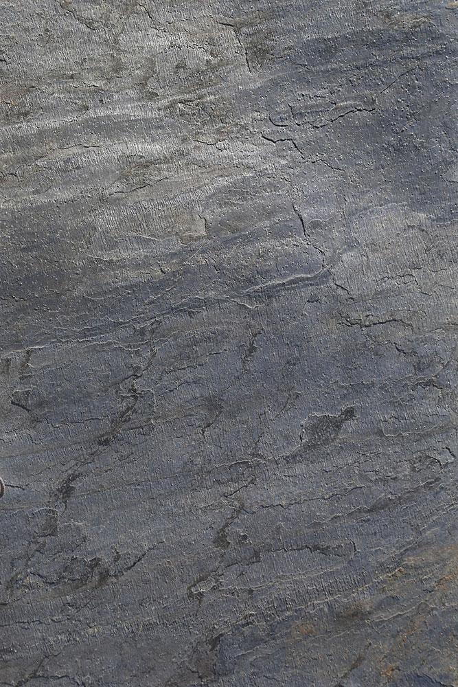 AxolotlStone_Ares4.jpg