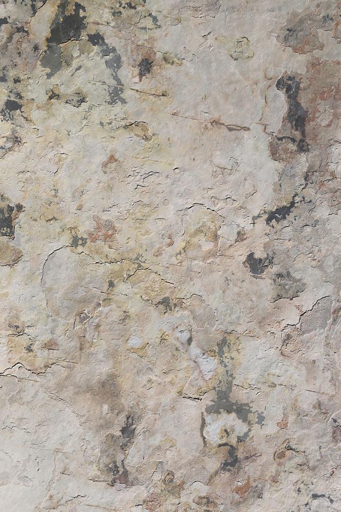 AxolotlStone_Artemis4.jpg