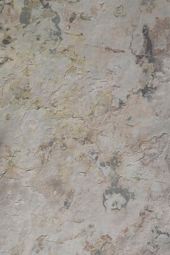 AxolotlStone_Artemis5.jpg