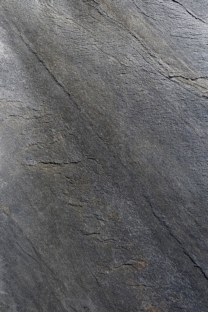 AxolotlStone_Ellora5.jpg
